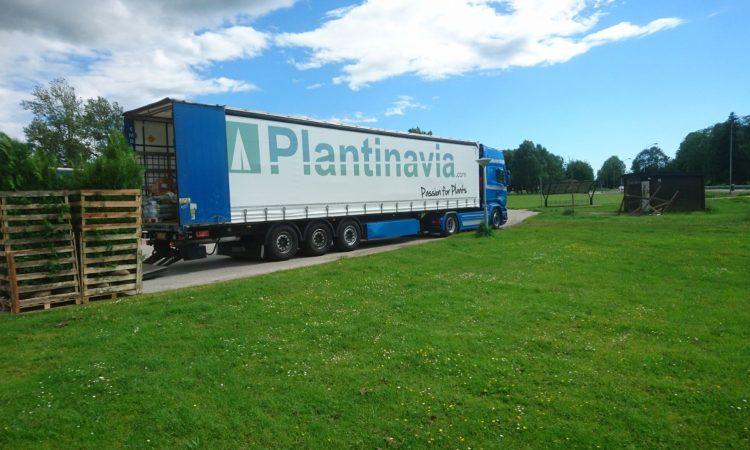 Plantinavia Lastbill